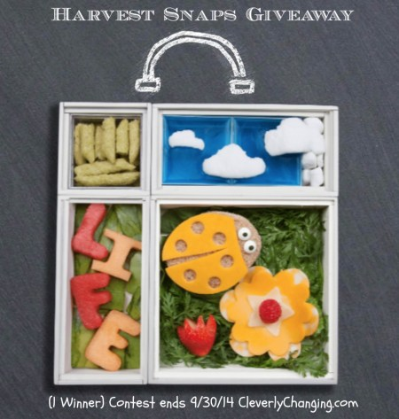 Harvest Snaps Giveaway ends 9/30/14 #sponsored visit cleverlychanging.com to enter