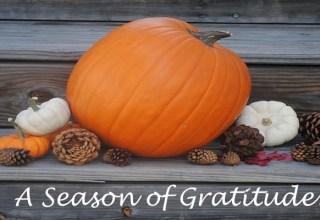 Thanksgiving is a season of gratitude