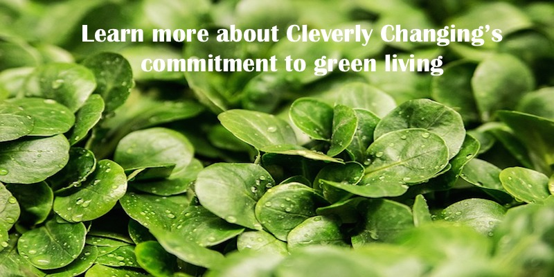 Are you interested in green eco friendly living? Don't know where to start? Learn more.