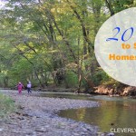 20 Ways to Socialize Your Homeschool Child
