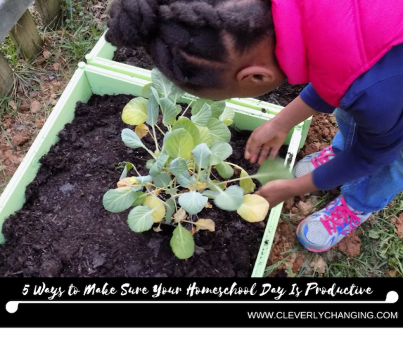5 Ways to Make Sure Your Homeschool Day Is Productive_ raising gardeners