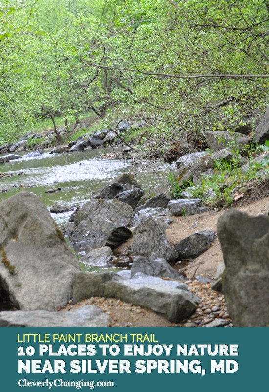Nature Places to visit - Little Paint Branch Trail-1