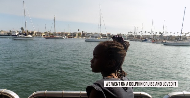 We Went on a Dolphin Cruise and Loved it near Newport Beach | OCEAN VIEW