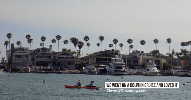We Went on a Dolphin Cruise and Loved it near Newport Beach | People Kayaking in the ocean