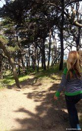 Trail down to Baker Beach