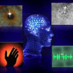 2010-11-15_Biometrics