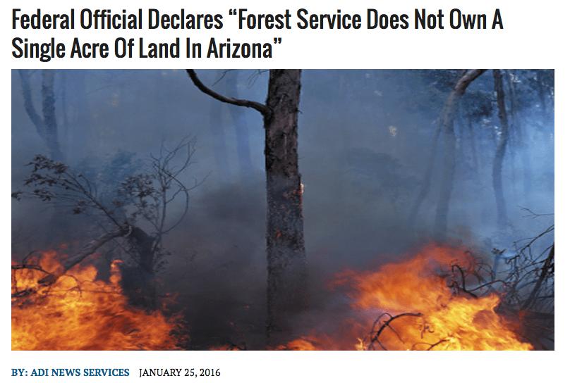Forest Service in Arizona