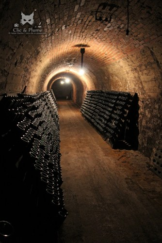 Caves traditionnelles - Champagne Renard-Barnier / © Carine Charlier / www.clic-et-plume.com