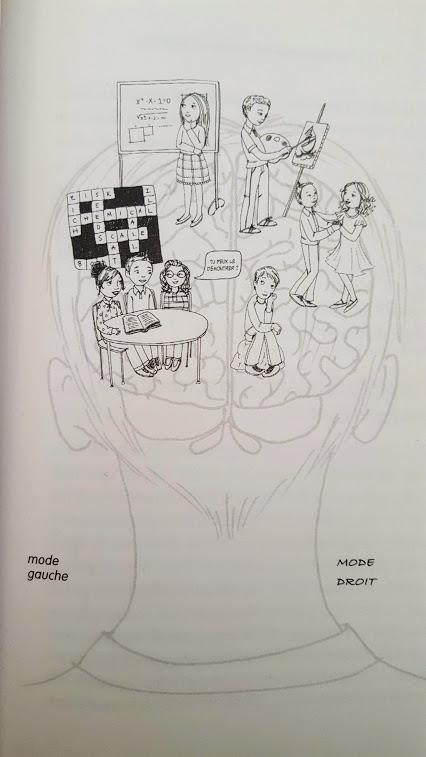 Le-cerveau-de-votre-enfant-gauche-et-droit