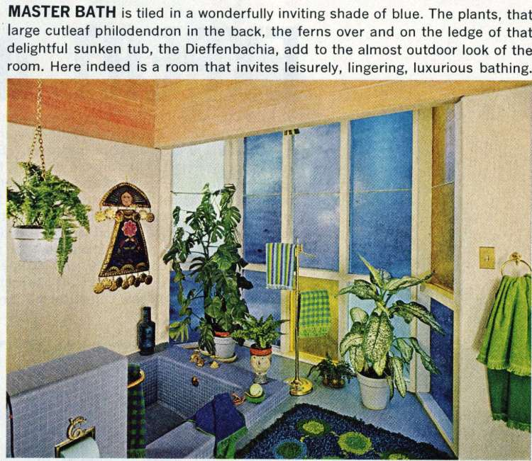 A mid-century modern home design and decor 1965 (2)