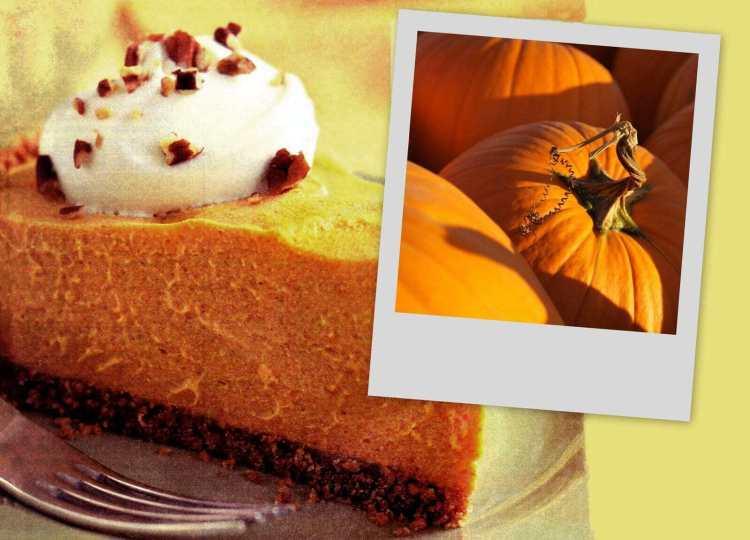 Classic cheesecake-style no-bake pumpkin cream pie recipe