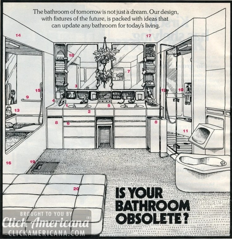 Ready to remodel? The bathroom of tomorrow is not just a dream anymore! (1976)
