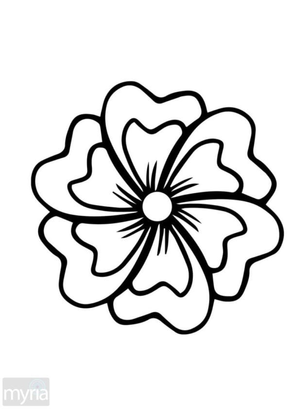 free printable easy flower coloring pages | Click Americana's Shop - See cool fashions, vintage ...