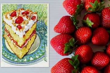 Vintage strawberry meringue cake recipe