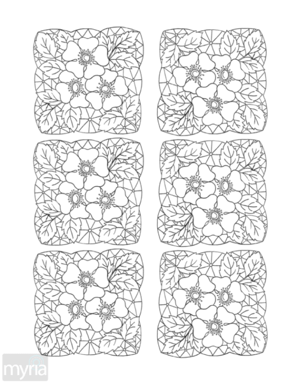 Vintage Patterns Adult Coloring Book: Nature-inspired designs from the Victorian & Edwardian eras