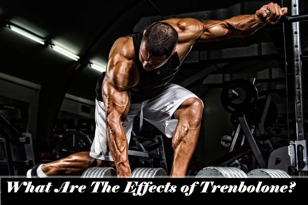 You are currently viewing What Are The Effects of Trenbolone?