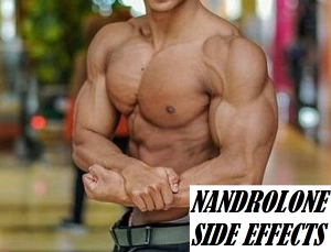 Nandrolone Side Effects