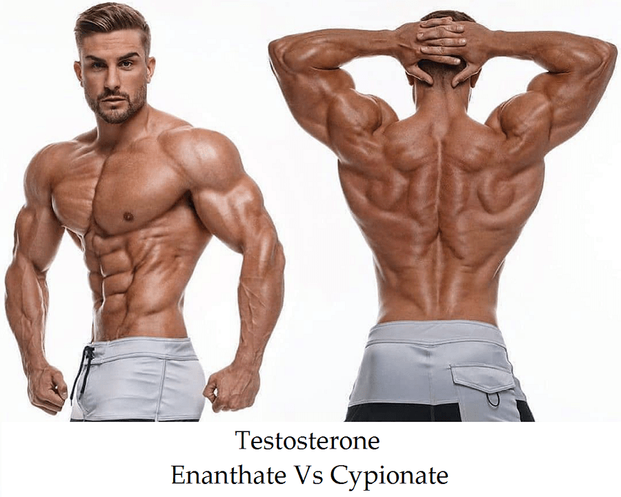 Testosterone Enanthate Vs Cypionate