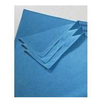 Contico MFCB Microfibre Cloth Blue Pk10-0