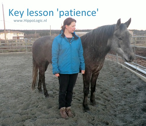 Teaching calm and relaxed behaviour with HippoLogic Key Lesson Patience