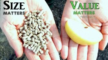 _treats_size_matters_value_matters_hippologic