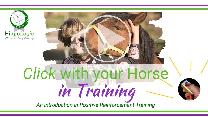 Free Clicker Training course Click With Your Horse in Training an introduction in positive reinforcement training