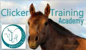 HippoLogic Clicker Training Academy