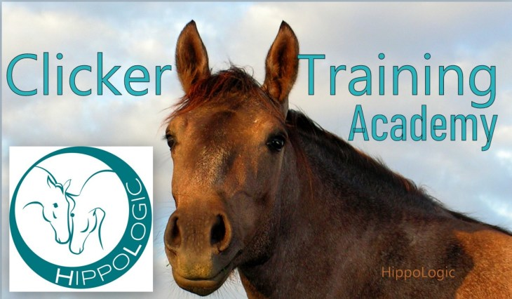 HippoLogic Clicker Training Academy