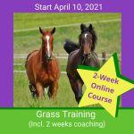 HippoLogic Grass Training April