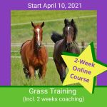 HippoLogic Grass Training April