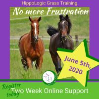 This course provides you with all the tools and training techniques to teach your horse to lead on grass without him pulling or pushing you so he can dive into the grass for a bite.