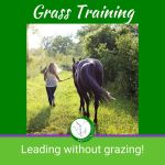 HippoLogic Grass training