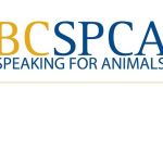 Rehabilitation trainer and speaker at BCSPCA