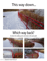 MT #561-Down & Back-Winter Rail