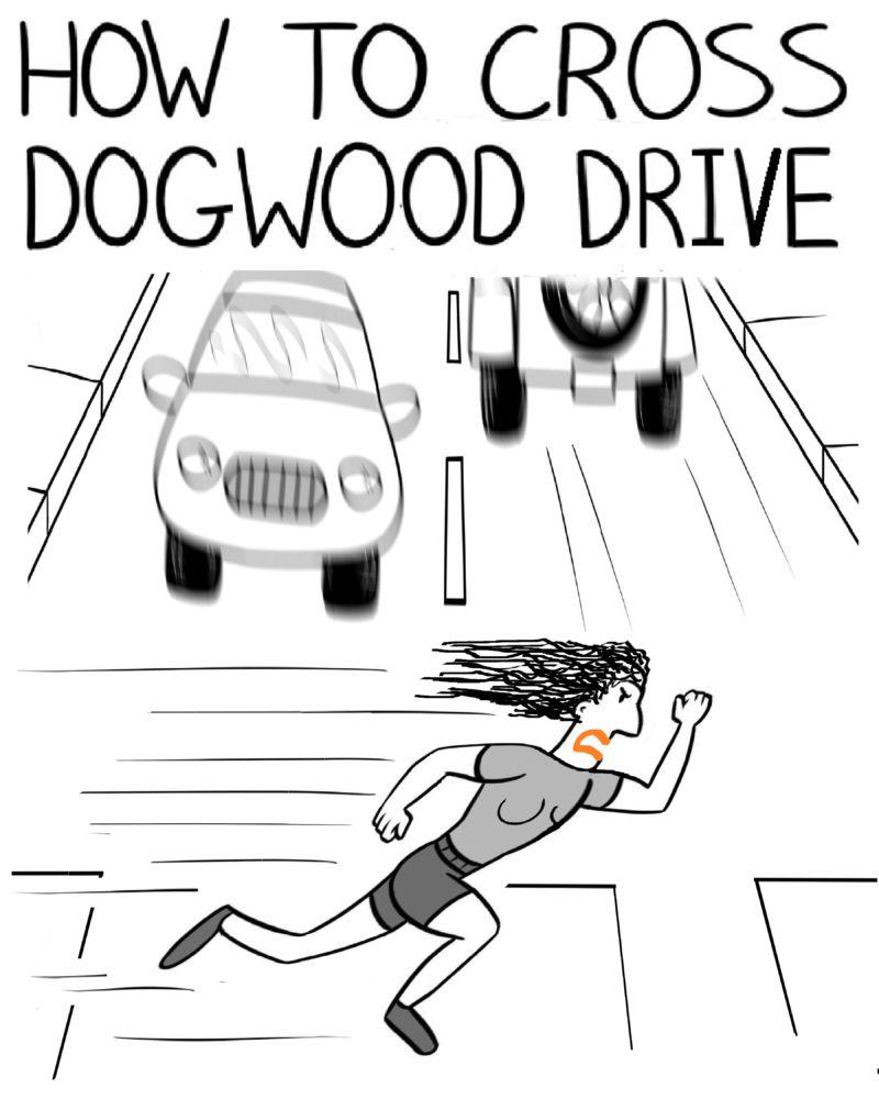 MT#959R2 Ladysmith Drivers Are Speed Freaks! (Art by Sam Bush)
