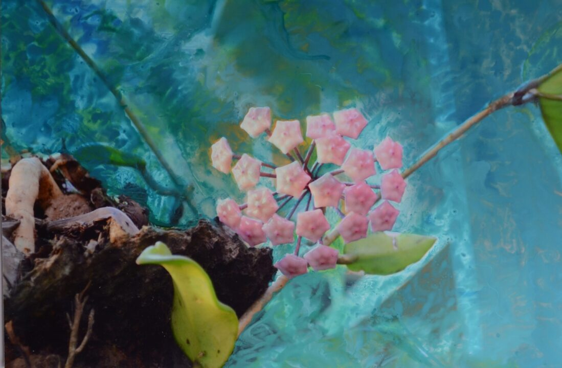 Conheça a Artista Gisele Gobbo