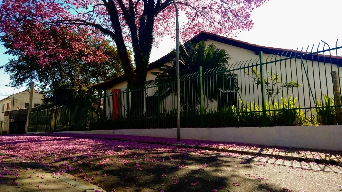 A casa mais antiga da Cidade de São Paulo está localizado no bairro do Tatuapé