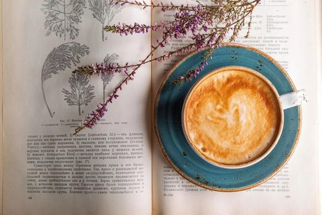 Conheça a história do café: A bebida que é Patrimônio Mundial