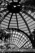 Connie Hanks Photography // ClickyChickCreates // Balboa Park Botanical Building