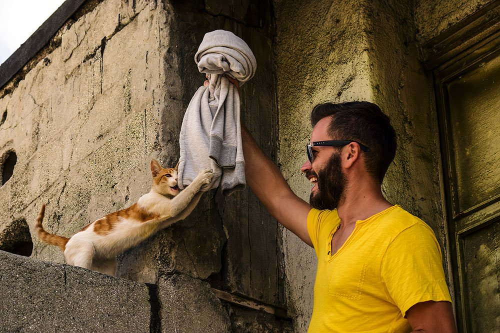 Istanbul: Enrico e il gattino