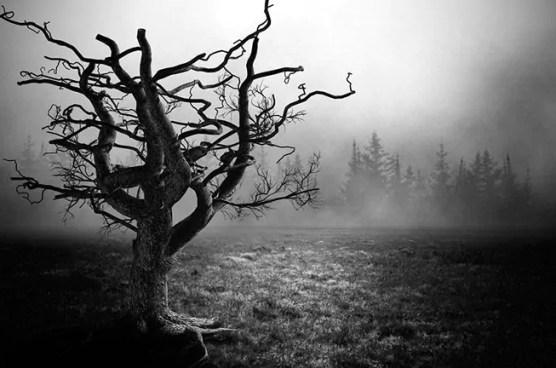 5 Teorias pós morte que vão perturbar você