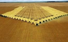 Seis fazendas agrícolas para seguir no Instagram
