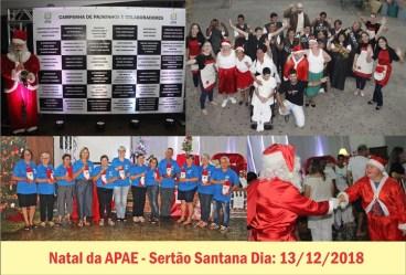 Natal APAE001