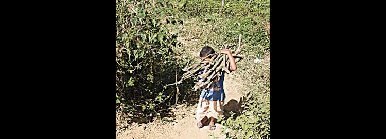 Combate ao trabalho infantil