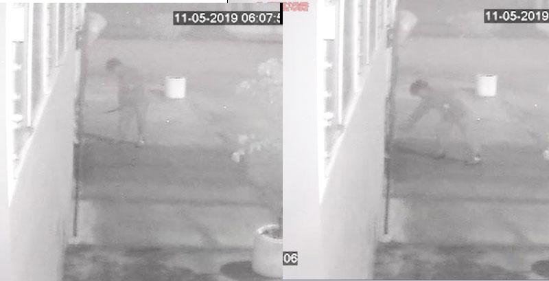 Homem é flagrado agredindo cachorras em Tapes (vídeo)