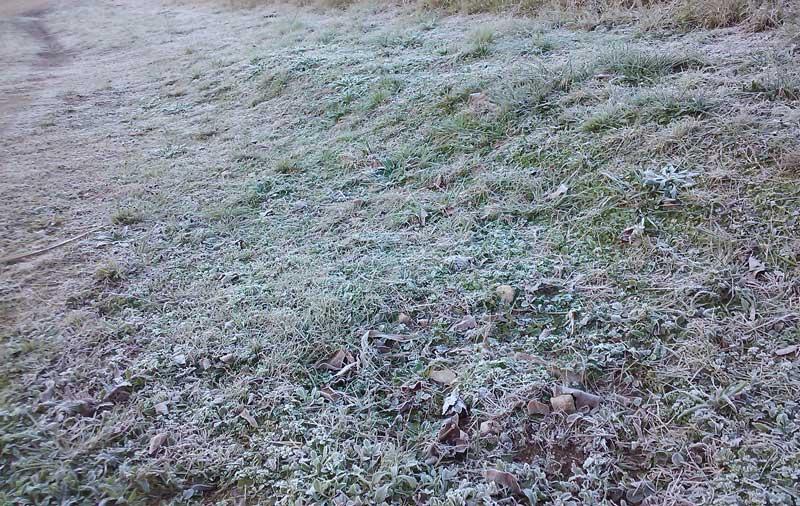 Frio deve seguir até quarta-feira (10)