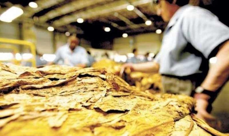 Fórum do Tabaco sugere mecanismos para garantir reajuste no preço