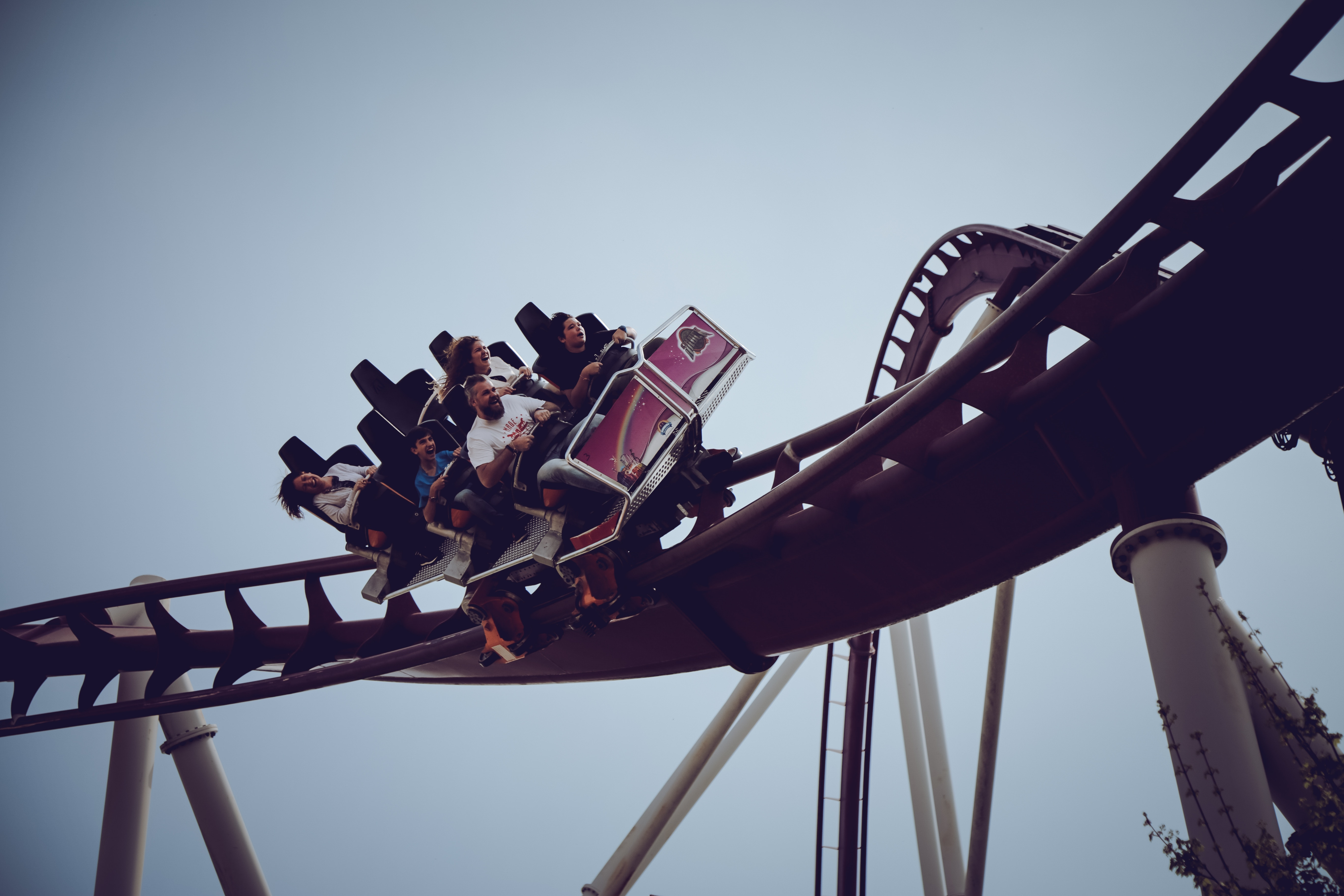 Surviving the rollercoaster