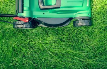 Spring Lawn Treatment with Lifestyle Home Garden