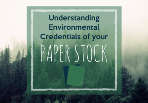 paper sustainability